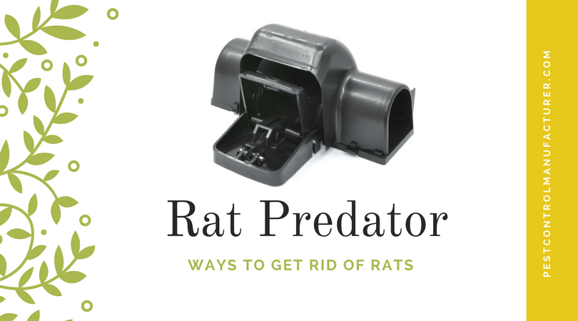 Plastic Rat Trap