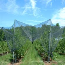 New design hail netting mesh for wholesales