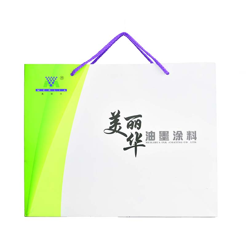 Shopping Custom Made Paper Bag