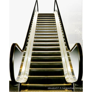 Escalator intérieur de Fjzy avec la largeur de pas de 30 degrés de 1000mm