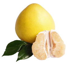 Chinese Fresh Fruit Competing Price Fruit Honey Grapfruit