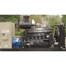 Generador de biogás de 80KW