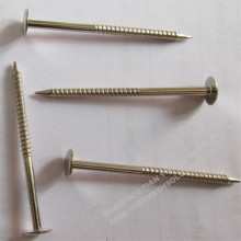 Anel Annan Shank Nail for Building
