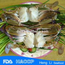 La venta caliente manchó el cangrejo con el certificado de la pesca