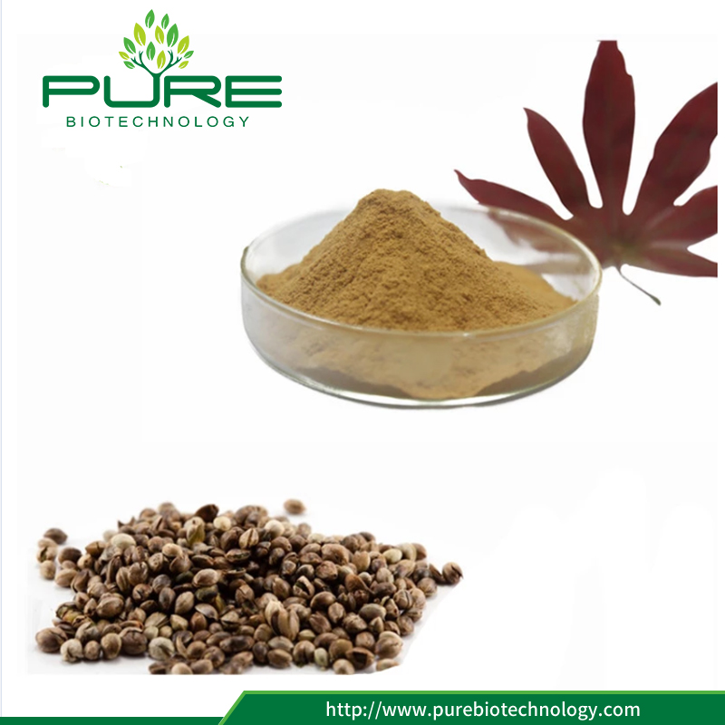 Hemp Seeds Extract Powder