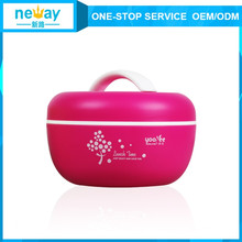 Hot Sale Apple Cute Pastice Double Layers Lunch Box for Kids