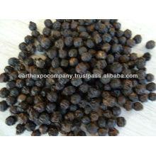 black pepper mg1