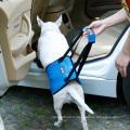 2017 nouveau protègent le harnais de soutien de harnais de chien avec la poignée pour les jambes postérieures plus faibles ou blessées