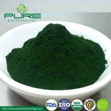 Hot selling Chlorella Powder /Organic Chlorella Powder