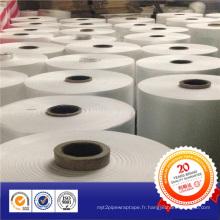 Ruban de prévention de corrosion viscoélastique Jumbo Roll de Chine Fabricant