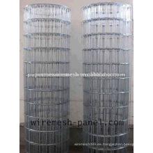 Malla de alambre soldada electro galvanizada 2 * 2