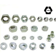 Hexagon Nuts DIN934 with High Tensile