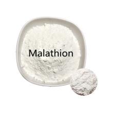 Comprar en línea Ingredientes activos precio de polvo de malatión puro