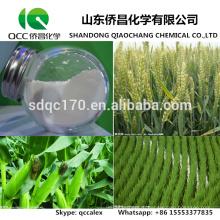 Гербицид / Агрохимическая дикамба 98% TC 48% SL 70% WDG № CAS: 1918-00-9
