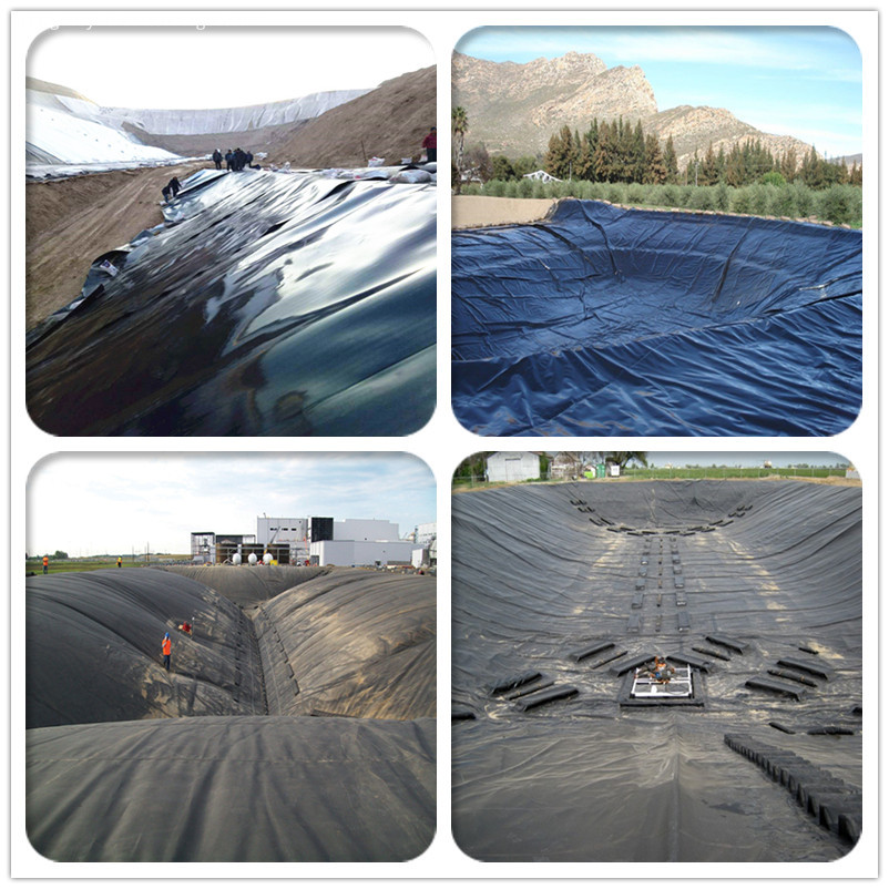 HDPE Geomembrane for Fish Pond Farming