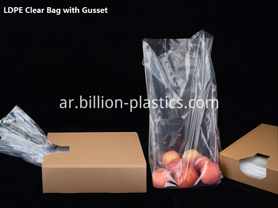 Food Bag with Gusset