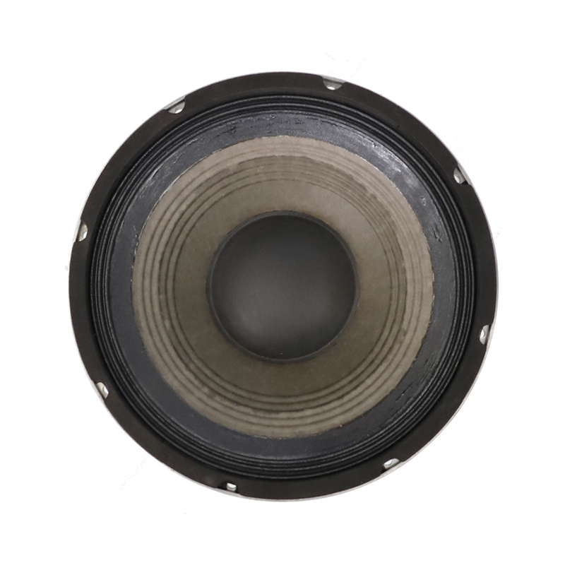 8ohm Party Speaker