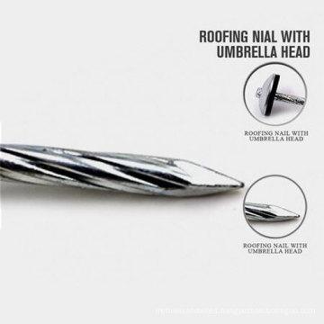 New Design Iron Nails China Supplies Alibaba China with Good Quality