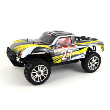Electric 4WD High Speed RC Car 1/8 Scale