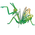 Insect Shape Diy 3D Puzzles Toy