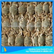 Délicieux crabe de boue congelé au meilleur prix