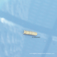 High Quality Specal Arc NdFeB Neodymium Permanent Magnet Ts16949