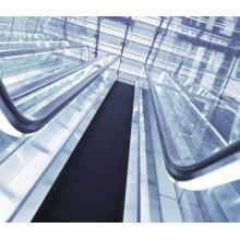 Escalator de Fjzy Elevator avec 35 degrés