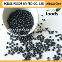 Chinese small , black canned beans