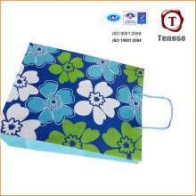 Elegant Decorative Paper Shopping Bag, Paper Gift Bag, Paper Bag
