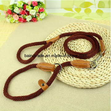 2016 High Quality Nylon Rope Collar and Leash