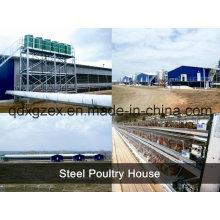 Estructura de acero casa de pollo / casa de pollo (pH-16133)