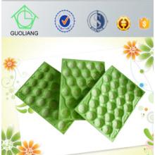 Тест FDA Стандарт Канада рынок известные авокадо использовать Пластиковые лотки Упаковка Сделано в Китае