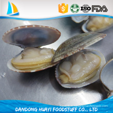 Fruits de mer congelés à faible teneur en gras sans graisse congelée Clam