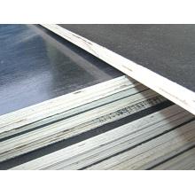 Ply Wood Poplar Core WBP Glue Utilizado para Construcciones