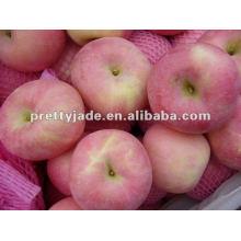 Fuji apple premium