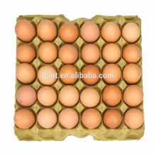 caixa de ovo de alta-top, fornecedores de caixa de ovo hightop
