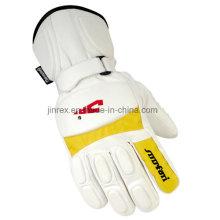 Winter Outdoor Sports Windproof Waterproof Insulated Skiing Glove
