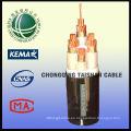 1kV Cable De Energía Halógeno Del Cero Zero De la Rejilla Del Estado De China