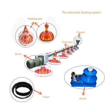 2018 Nouveaux produits alimentation de poulet système d'alimentation automatique de la volaille de la volaille
