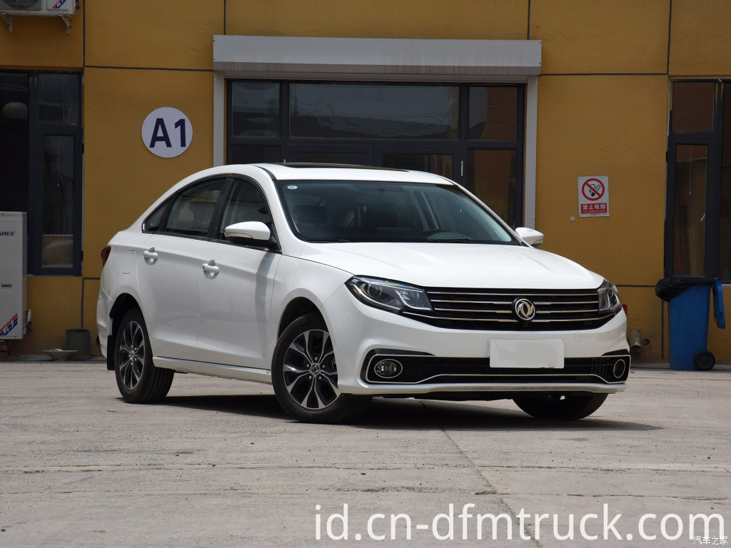 Dongfeng S50(14)
