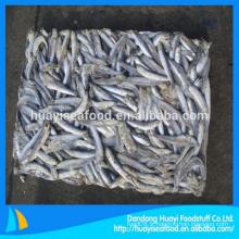 Poisson à l'anchois congelé et frais avec prix favorable
