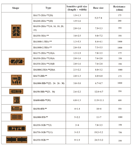 Technical Data of Double Axle Strain Gauge