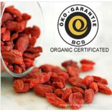Orginc Certification Dried Goji Berry