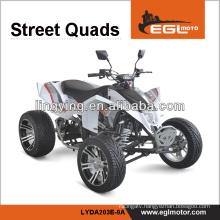 250CC ATV Bike