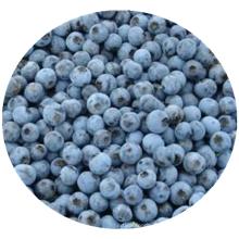 Iqf frozen fruit frozen blueberry