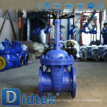 Válvula de compuerta DIN Didtek con dibujo