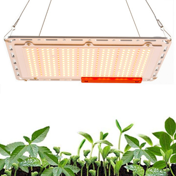 Grow light quantum board 120W