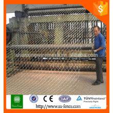 Fornecimento galvanizado ou PVC revestido malha de arame hexagonal / rede de arame hexagonal / malha de frango com melhor preço