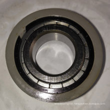 Cylindrical Roller Bearing Single Row Rn20X36.81X16V for Brevini