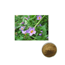 Factory supply 100% natural Top Grade Best Pure Bacopa Monnieri Extract 20% 50% in Hot Sale